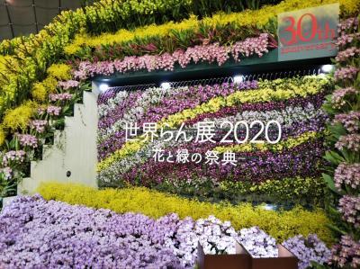 20200215_101145.jpg
